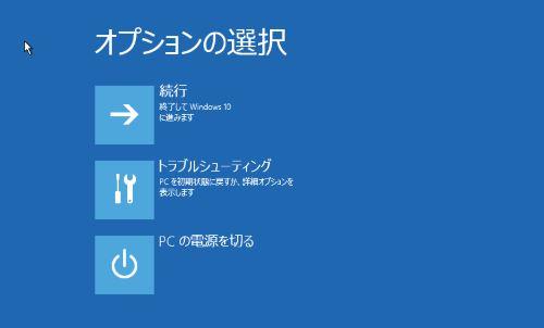 オプションの選択 画面
