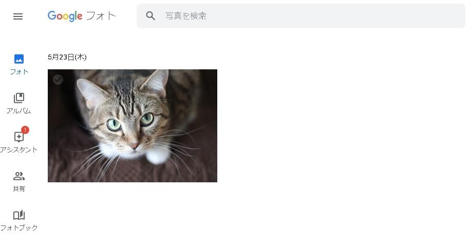 Googleフォト ブラウザ