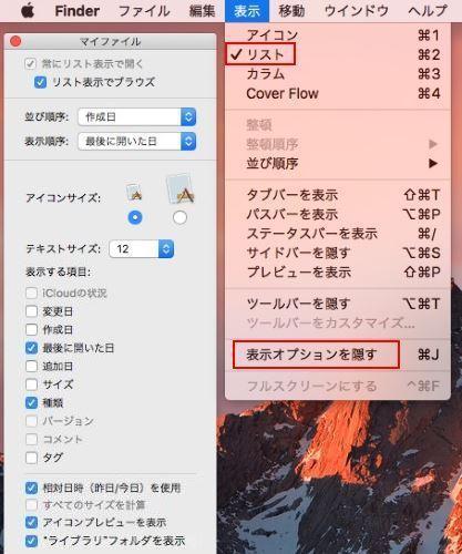 Mac 表示オプションを隠す