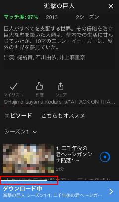 Netflix ビデオ ケージ