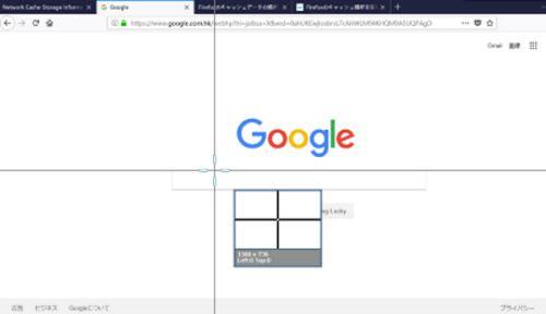 Google スナップショット